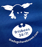 blue rope-frisbee buystuff page detail